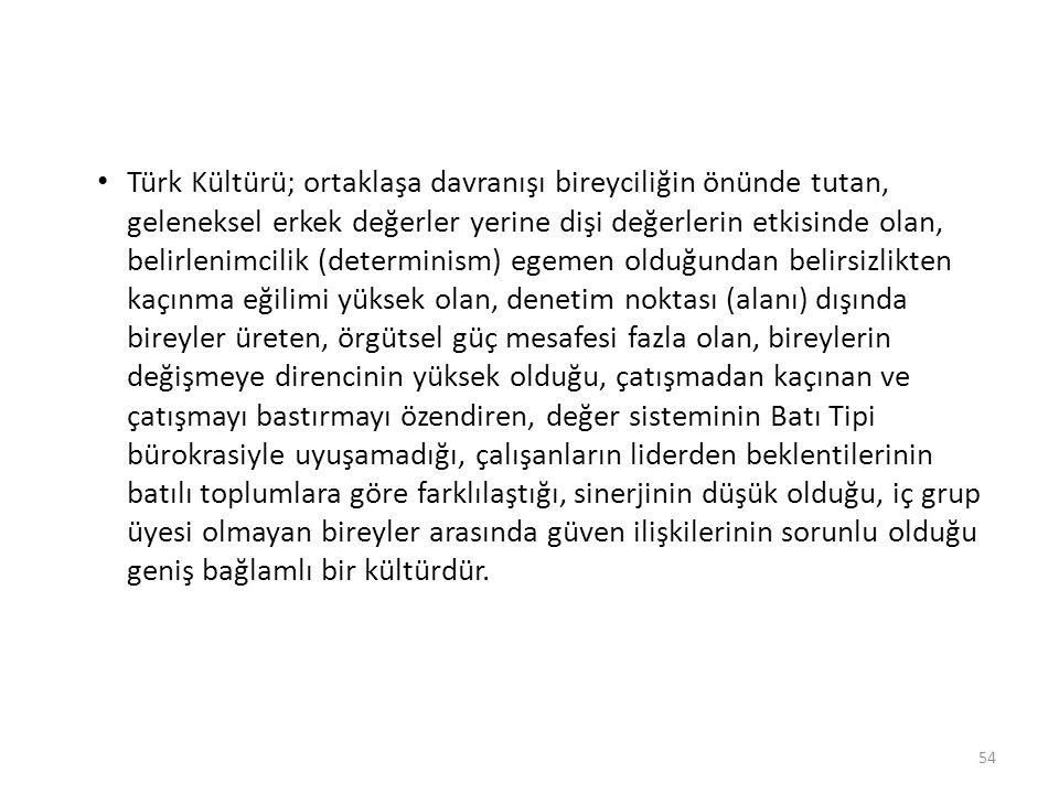 Türk Kültürü; ortaklaşa davranışı bireyciliğin önünde tutan, geleneksel erkek değerler yerine dişi değerlerin etkisinde olan, belirlenimcilik (determi