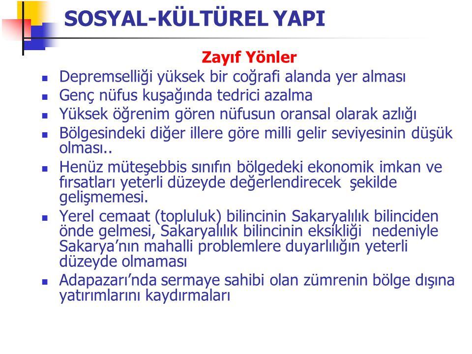 Güçlü Yönler Türkiye'nin en gelişmiş bölgesinde bulunmak… Geniş pazar imkanı Gelişmiş bir sanayi ve ticaret altyapısı (OSB, ulaşım, finansman, sanayi ve ticari merkezlere yakınlık) Kaynak donanımının değişik sanayi faaliyetini besleyecek nitelikte olması (tarım sanayi) Nitelikli işgücü edinebilme imkanı (Kocaeli, İstanbul'a yakınlık) Referans sanayi yatırımlarının varlığı (Goodyear, Toyota, Otokar, Otoyol) Beyaz ette uzman işletmelerin oluşması Sanayi Yatırım Ticaret