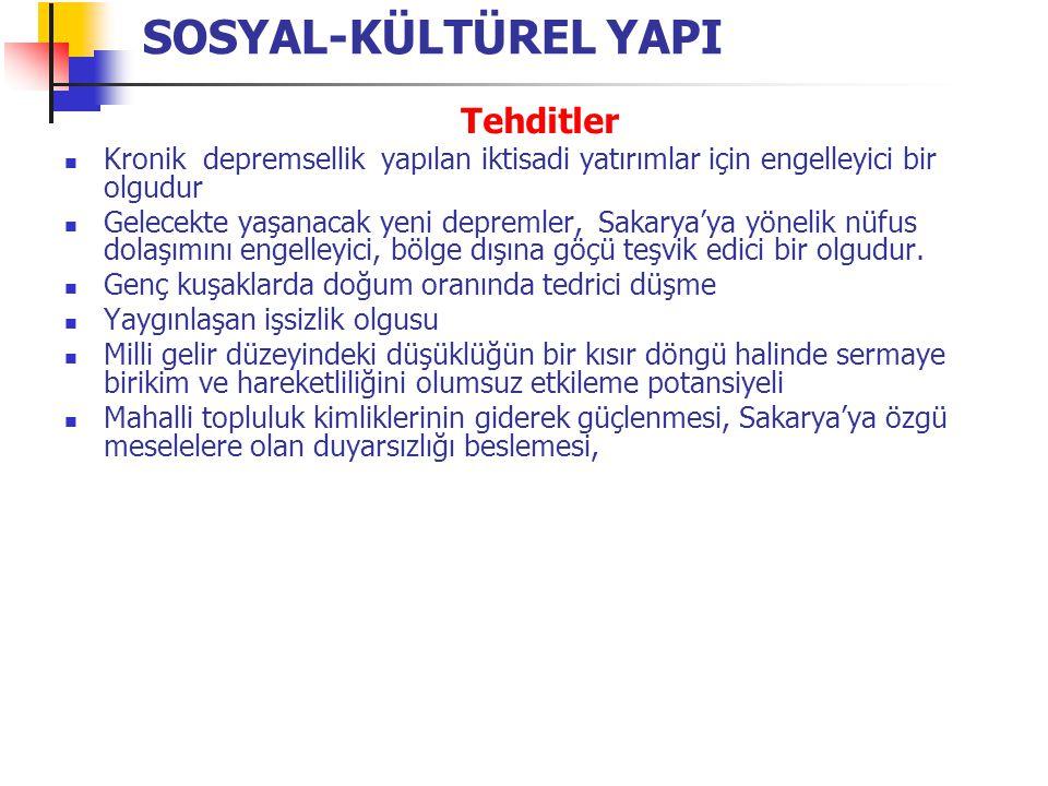 Fırsatlar Bölge ekonomisiyle eklemlenme potansiyeli Coğrafi konumunun sanayi ve ticari faaliyetlerin gelişmesi için uygunluğu Serbest Bölge sayesinde dünya ekonomisine açılma Trakya-İstanbul ve Kocaeli'de sanayinin doygunluğa ulaşması Türkiye'nin dışa açılması ve Sakarya'nın bu süreçten faydalanma potansiyeli (ihracat) Sanayi Yatırım Ticaret