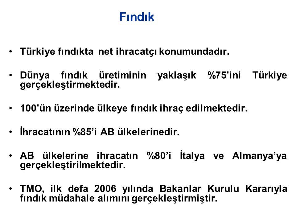 Fındık Türkiye fındıkta net ihracatçı konumundadır.