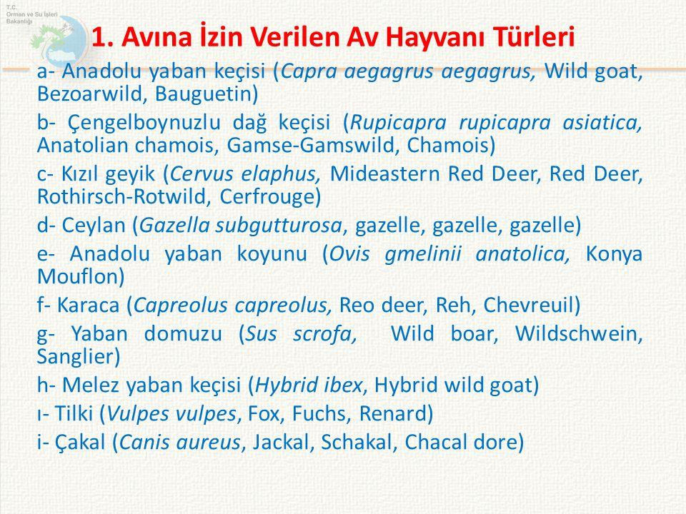 a- Anadolu yaban keçisi (Capra aegagrus aegagrus, Wild goat, Bezoarwild, Bauguetin) b- Çengelboynuzlu dağ keçisi (Rupicapra rupicapra asiatica, Anatol