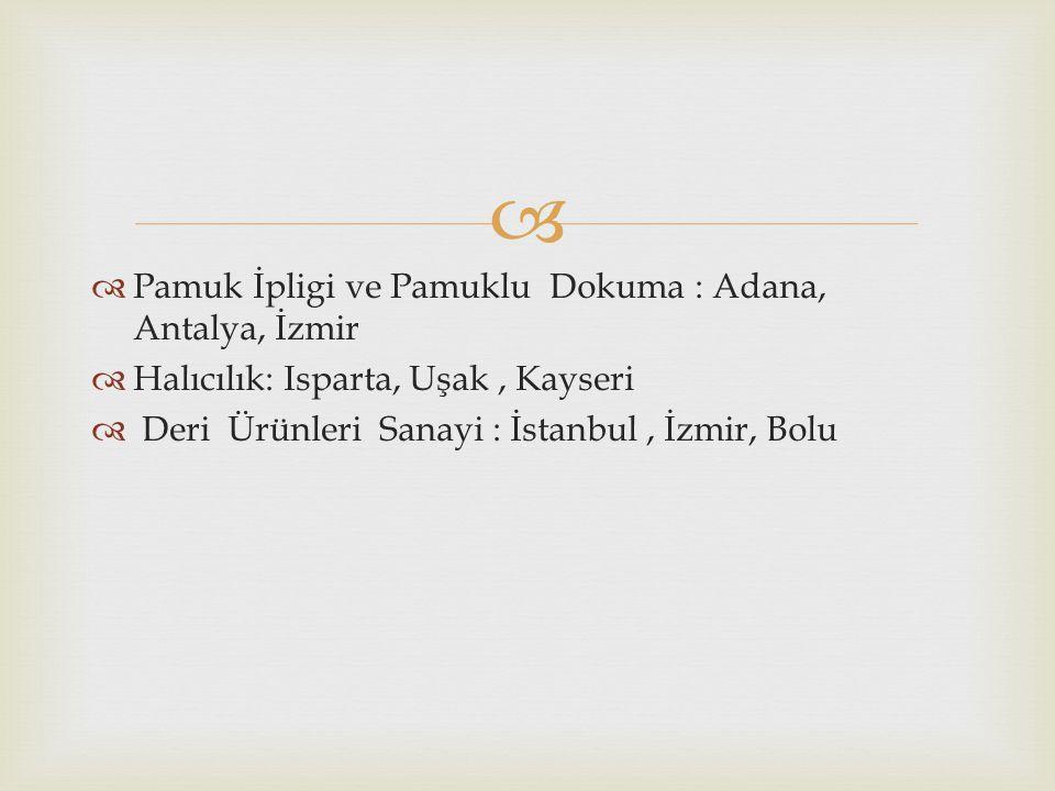   Pamuk İpligi ve Pamuklu Dokuma : Adana, Antalya, İzmir  Halıcılık: Isparta, Uşak, Kayseri  Deri Ürünleri Sanayi : İstanbul, İzmir, Bolu