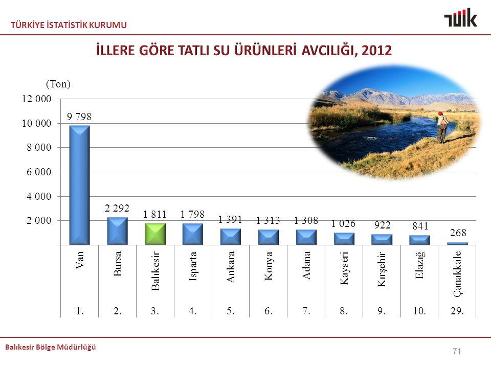 TÜRKİYE İSTATİSTİK KURUMU Balıkesir Bölge Müdürlüğü 71