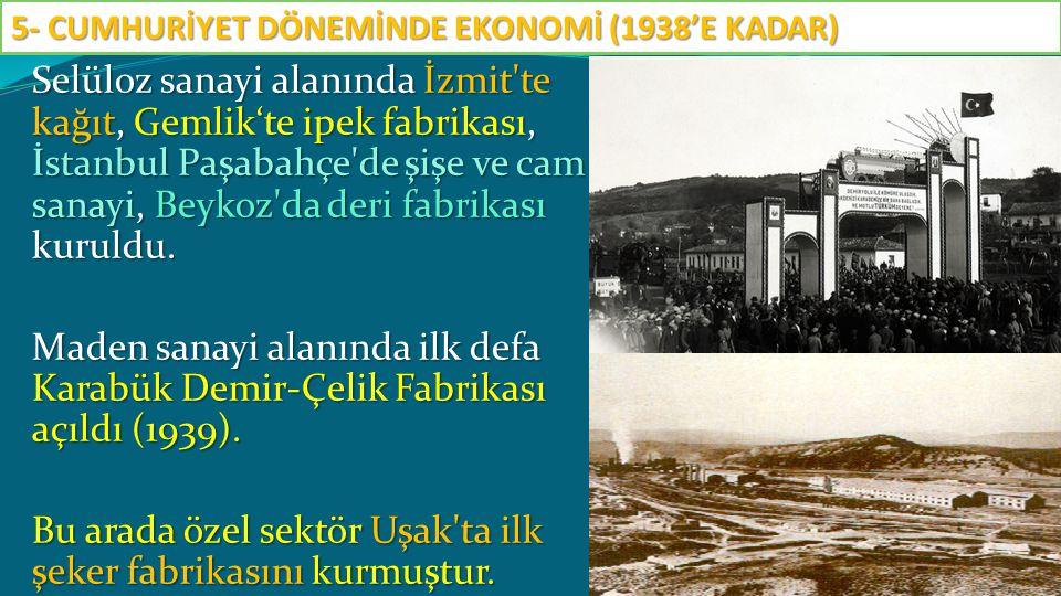 Selüloz sanayi alanında İzmit'te kağıt, Gemlik'te ipek fabrikası, İstanbul Paşabahçe'de şişe ve cam sanayi, Beykoz'da deri fabrikası kuruldu. Maden sa