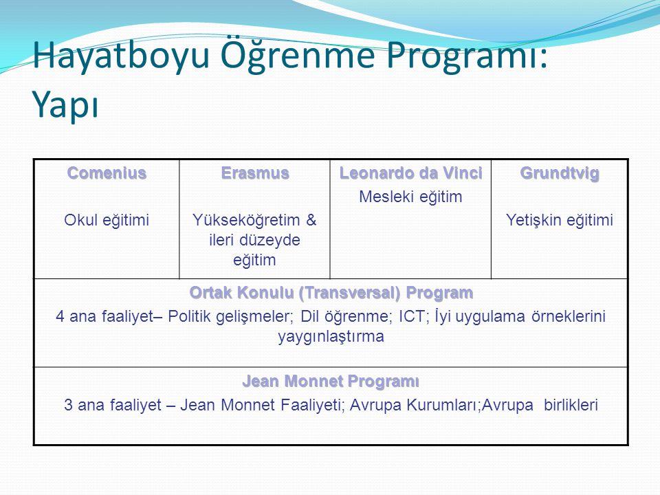 Hayatboyu Öğrenme Programı: Yapı
