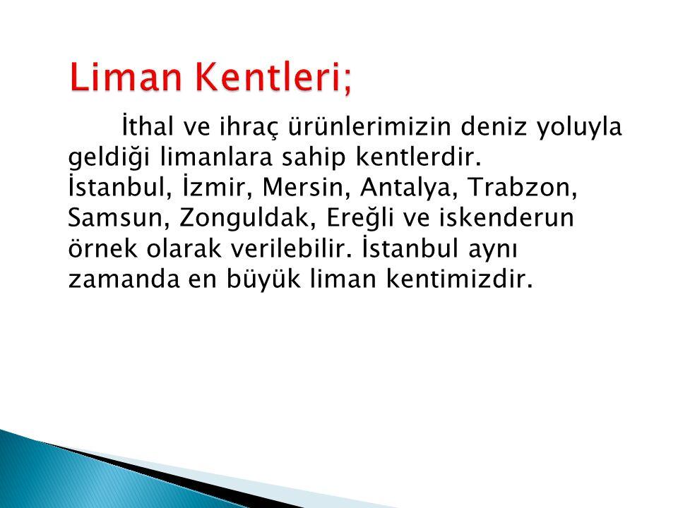 İthal ve ihraç ürünlerimizin deniz yoluyla geldiği limanlara sahip kentlerdir. İstanbul, İzmir, Mersin, Antalya, Trabzon, Samsun, Zonguldak, Ereğli ve