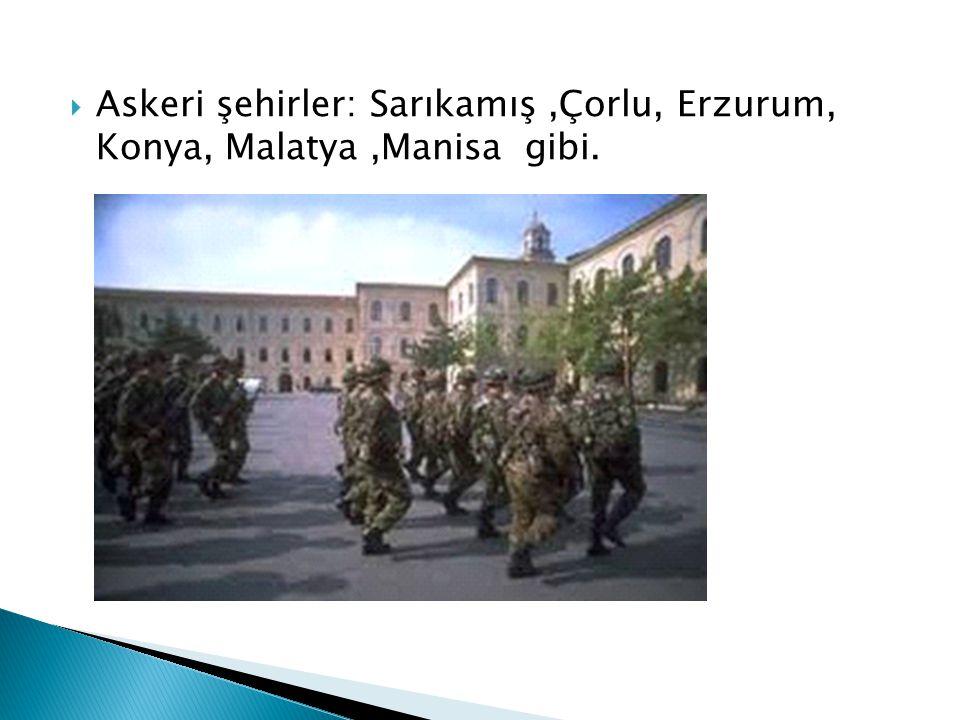 Askeri şehirler: Sarıkamış,Çorlu, Erzurum, Konya, Malatya,Manisa gibi.