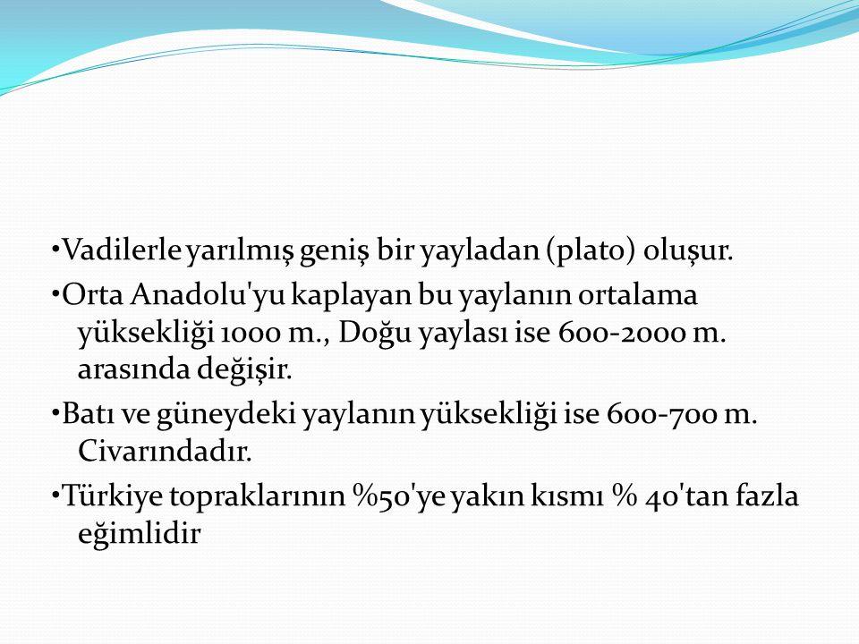 Vadilerle yarılmış geniş bir yayladan (plato) oluşur. Orta Anadolu'yu kaplayan bu yaylanın ortalama yüksekliği 1000 m., Doğu yaylası ise 600-2000 m. a