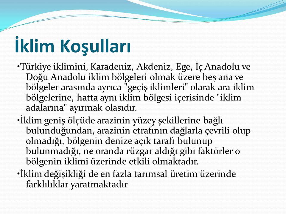 İklim Koşulları Türkiye iklimini, Karadeniz, Akdeniz, Ege, İç Anadolu ve Doğu Anadolu iklim bölgeleri olmak üzere beş ana ve bölgeler arasında ayrıca geçiş iklimleri olarak ara iklim bölgelerine, hatta aynı iklim bölgesi içerisinde iklim adalarına ayırmak olasıdır.