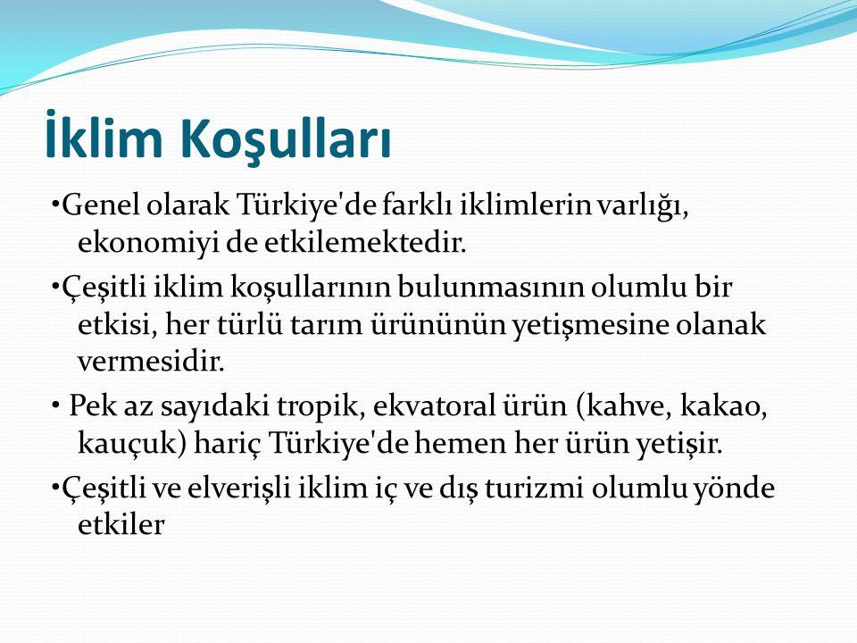 İklim Koşulları Genel olarak Türkiye'de farklı iklimlerin varlığı, ekonomiyi de etkilemektedir. Çeşitli iklim koşullarının bulunmasının olumlu bir etk