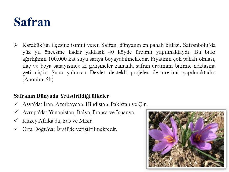 Safran  Karabük'ün ilçesine ismini veren Safran, dünyanın en pahalı bitkisi. Safranbolu'da yüz yıl öncesine kadar yaklaşık 40 köyde üretimi yapılmakt
