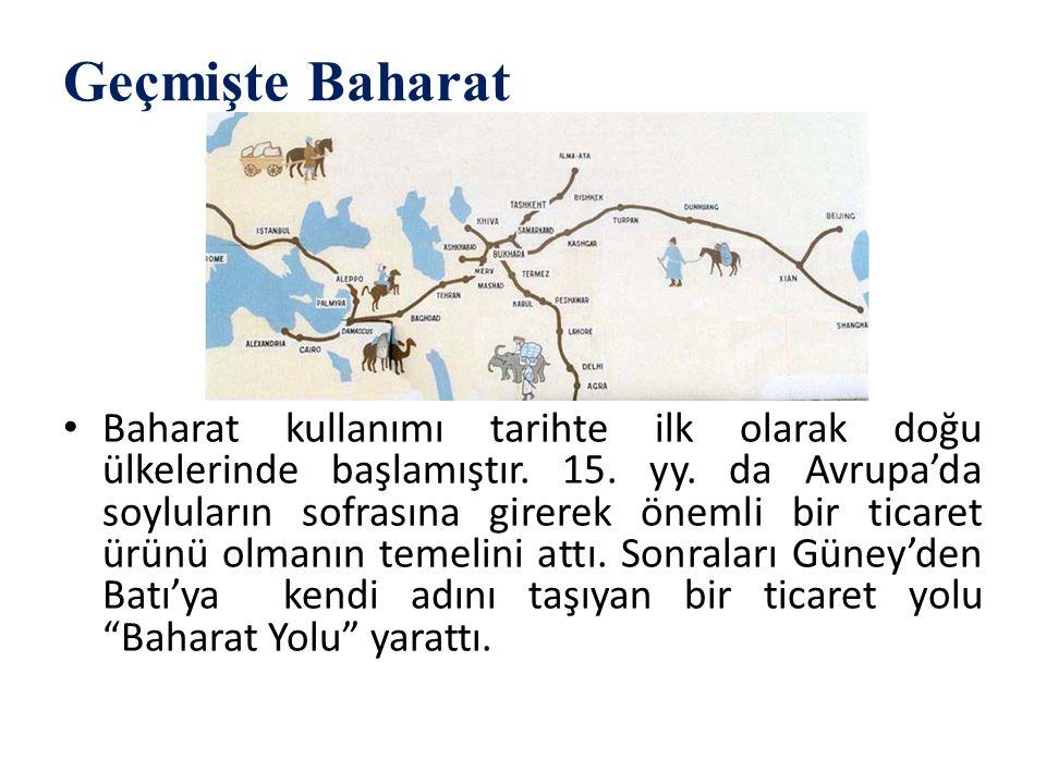 Geçmişte Baharat Baharat kullanımı tarihte ilk olarak doğu ülkelerinde başlamıştır. 15. yy. da Avrupa'da soyluların sofrasına girerek önemli bir ticar