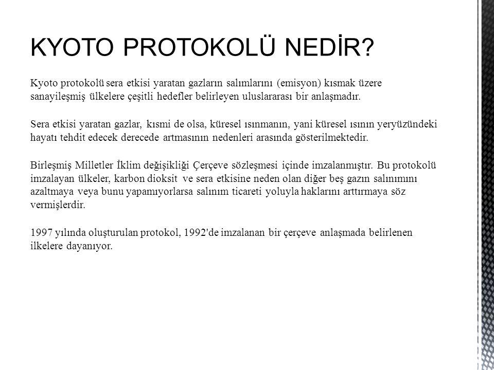 KYOTO PROTOKOLÜ NEDİR.