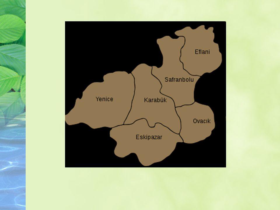 Coğrafya ve İklim Batı Karadeniz Bölgesi nde yer alan Safranbolu, il merkezinden 8 km ve denizden 65 km içerdedir.