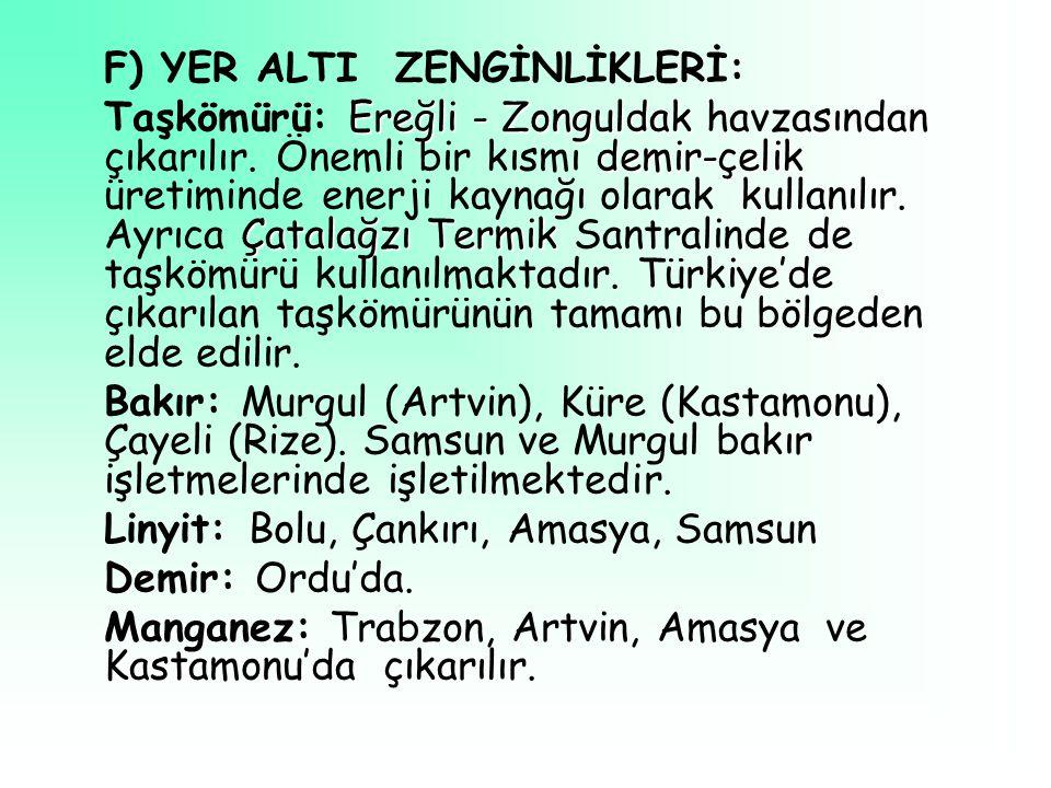 F) YER ALTI ZENGİNLİKLERİ: Ereğli - Zonguldak demir-çelik Çatalağzı Termik Taşkömürü: Ereğli - Zonguldak havzasından çıkarılır.