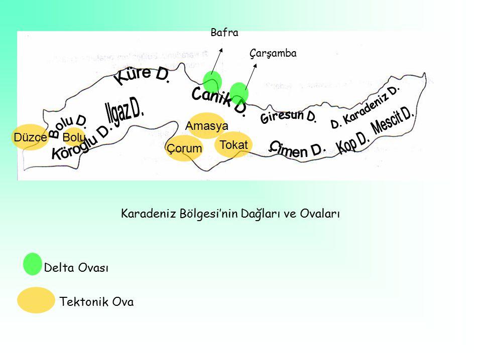 Bafra Çarşamba Tokat Amasya Çorum Bolu Düzce Karadeniz Bölgesi'nin Dağları ve Ovaları Delta Ovası Tektonik Ova