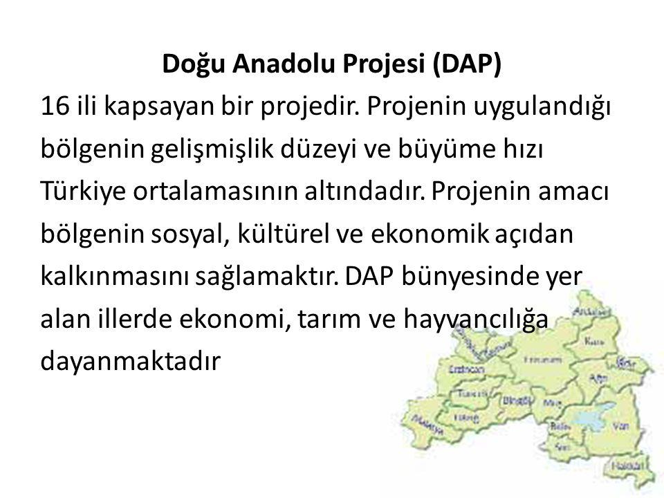 Doğu Anadolu Projesi (DAP) 16 ili kapsayan bir projedir. Projenin uygulandığı bölgenin gelişmişlik düzeyi ve büyüme hızı Türkiye ortalamasının altında