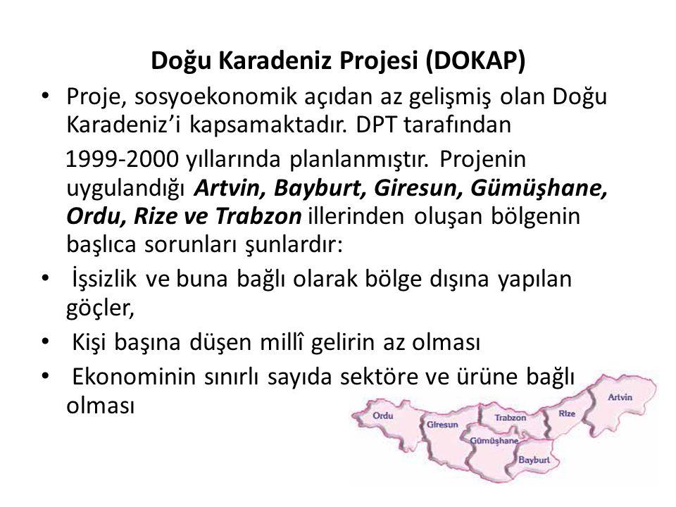 Doğu Karadeniz Projesi (DOKAP) Proje, sosyoekonomik açıdan az gelişmiş olan Doğu Karadeniz'i kapsamaktadır. DPT tarafından 1999-2000 yıllarında planla