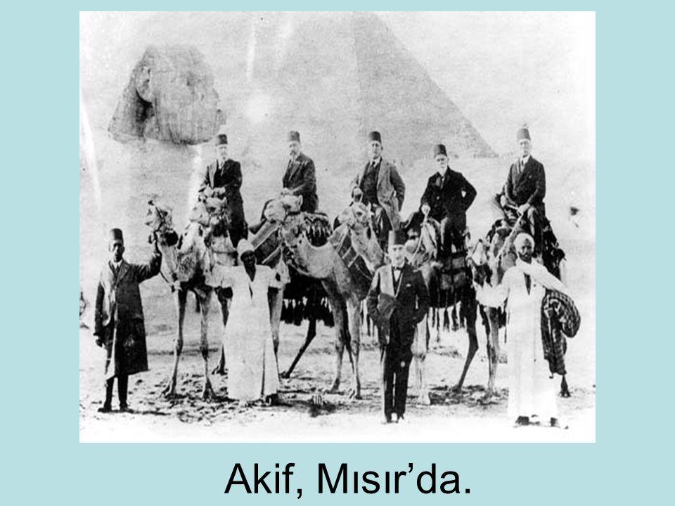 Akif, Mısır'da.