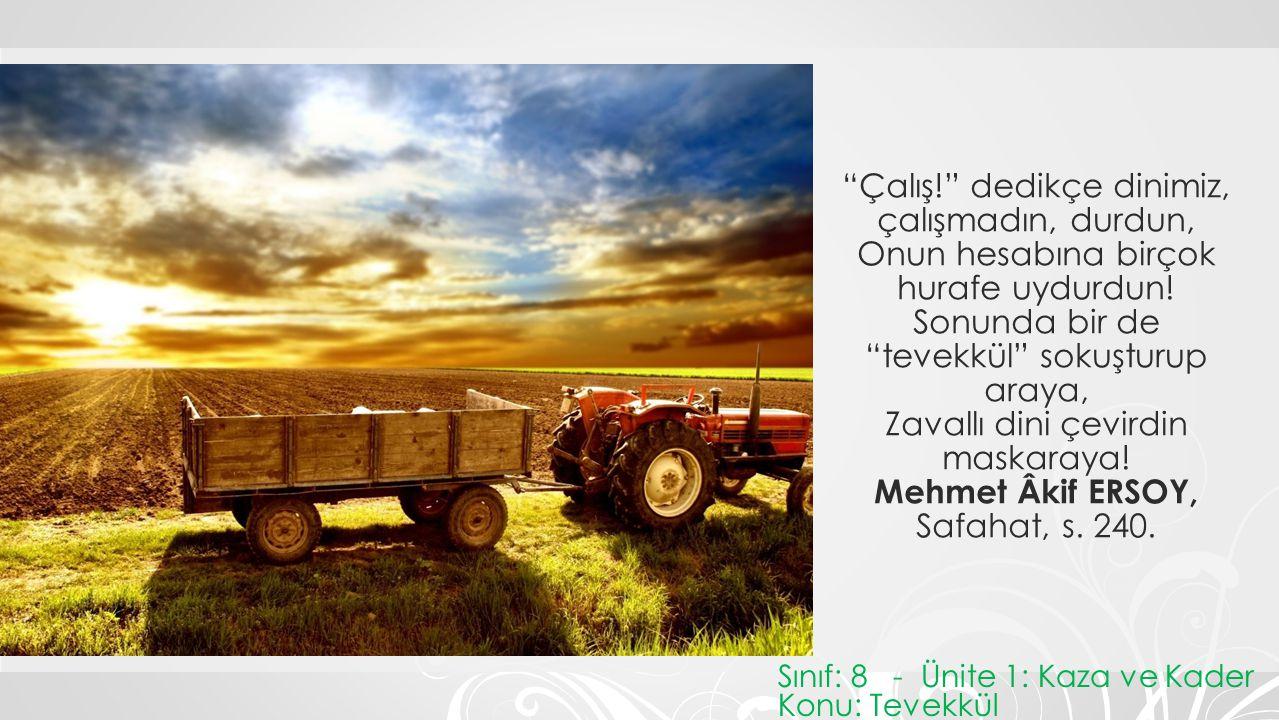 Gerekli tedbirleri aldıktan sonra Allah'a dayanıp güvenmek gerekir.