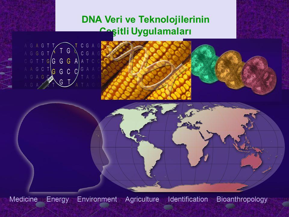 DNA Veri ve Teknolojilerinin Çeşitli Uygulamaları Medicine Energy Environment Agriculture Identification Bioanthropology