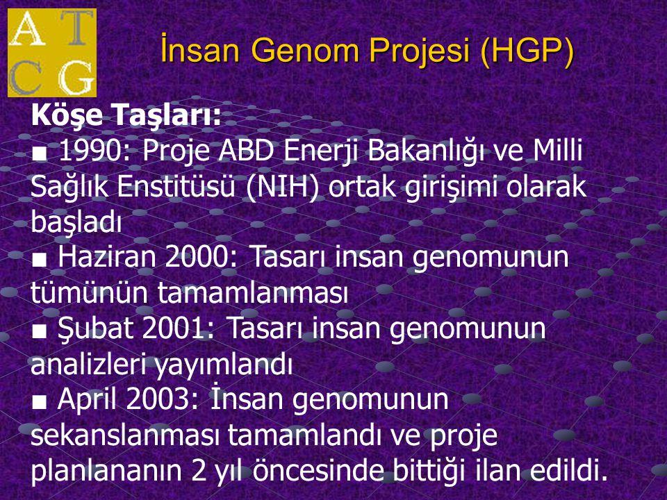 İnsan Genom Projesi (HGP) Köşe Taşları: ■ 1990: Proje ABD Enerji Bakanlığı ve Milli Sağlık Enstitüsü (NIH) ortak girişimi olarak başladı ■ Haziran 2000: Tasarı insan genomunun tümünün tamamlanması ■ Şubat 2001: Tasarı insan genomunun analizleri yayımlandı ■ April 2003: İnsan genomunun sekanslanması tamamlandı ve proje planlananın 2 yıl öncesinde bittiği ilan edildi.