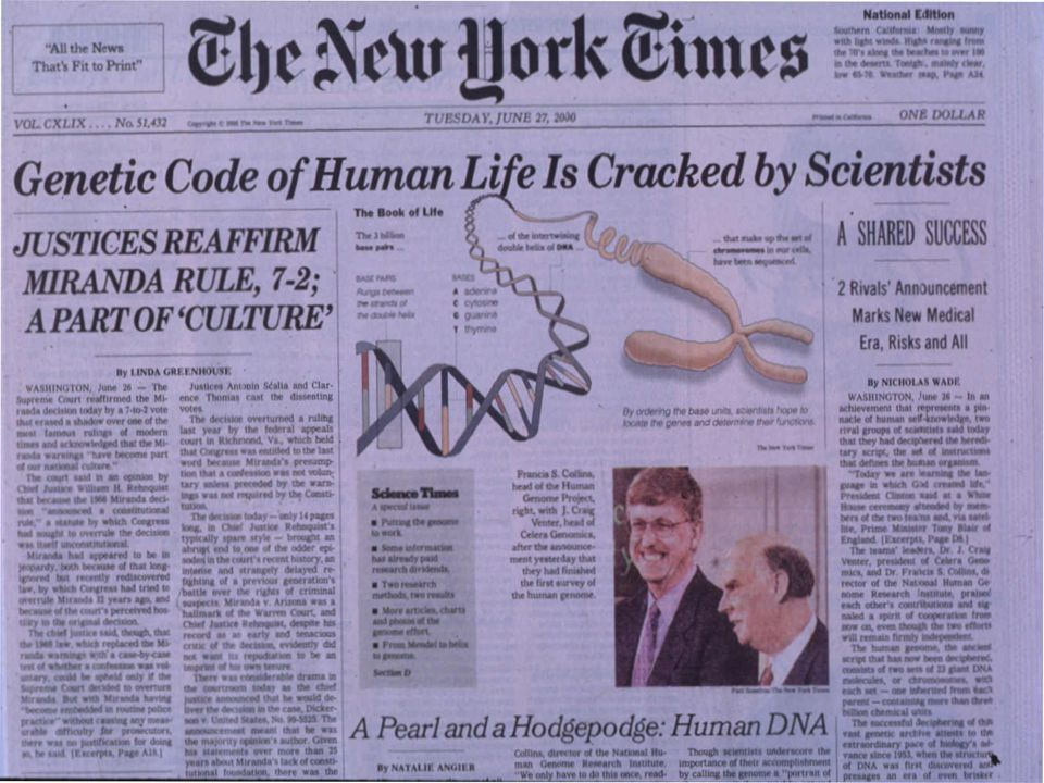 Kaynaklar 1.http://www.ornl.gov/sci/techresources/Human_Genome/home.shtml 2.