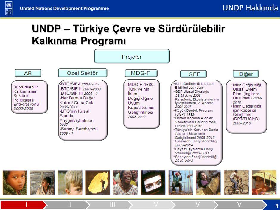 5 Türkiye Ülke Ofisi Program ve Proje Tablosu (26 Aralık 2008 itibariyle) TEMATİK ALANPROJE İSMİ FON KAYNAĞI BAŞLANGIÇ TARİHİ / BİTİŞ TARİHİ TOPLAM (USD) Çevre ve Sürdürülebilir Kalkınma BTC Küçük Yatırım Fonu – I.