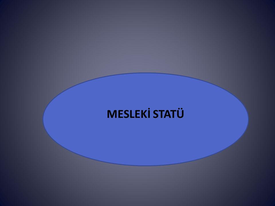 MESLEKİ STATÜ