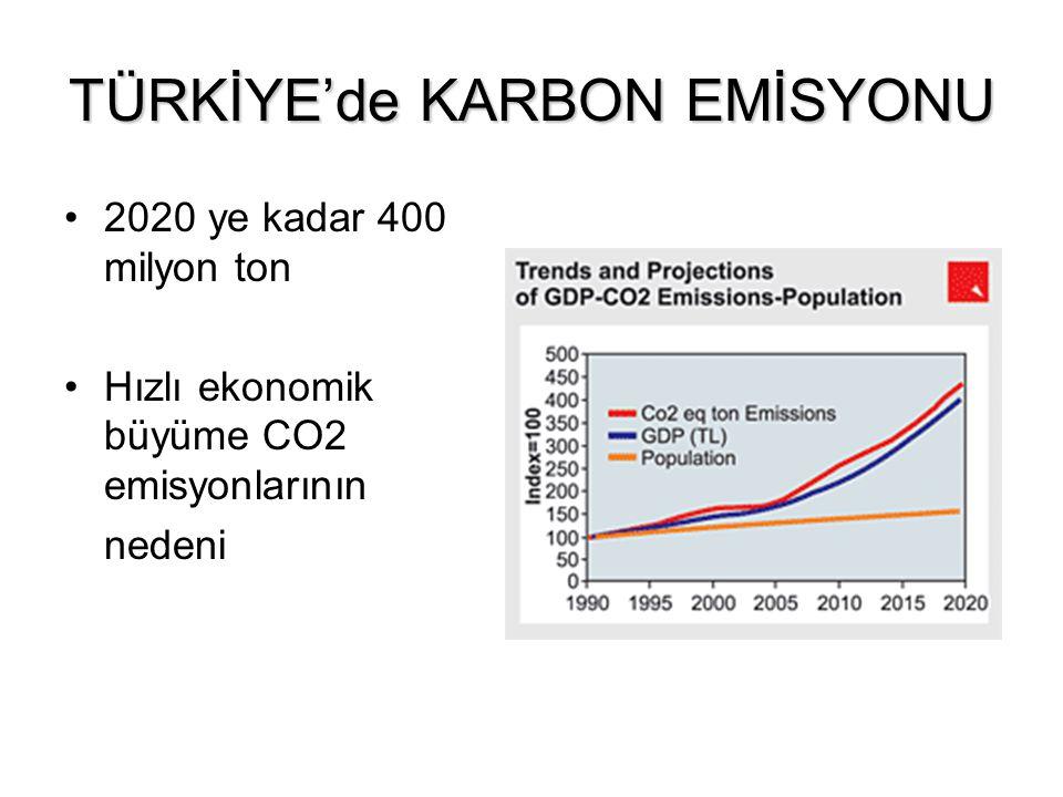 TÜRKİYE'de KARBON EMİSYONU 2020 ye kadar 400 milyon ton Hızlı ekonomik büyüme CO2 emisyonlarının nedeni