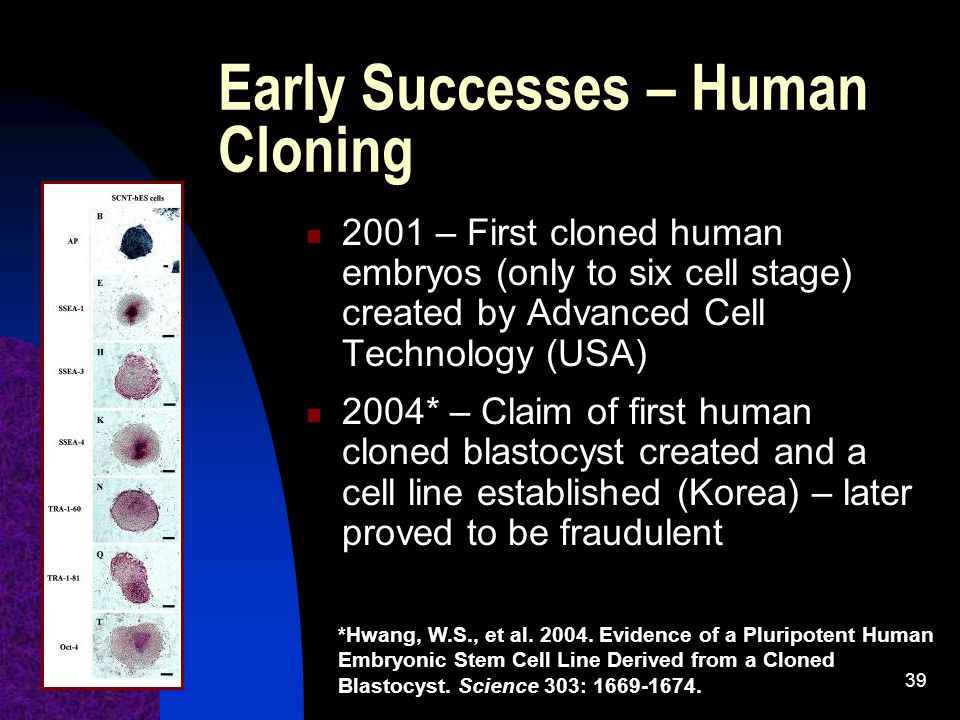 39 Early Successes – Human Cloning 2001 – First cloned human embryos (only to six cell stage) created by Advanced Cell Technology (USA) 2004* – Claim of first human cloned blastocyst created and a cell line established (Korea) – later proved to be fraudulent *Hwang, W.S., et al.
