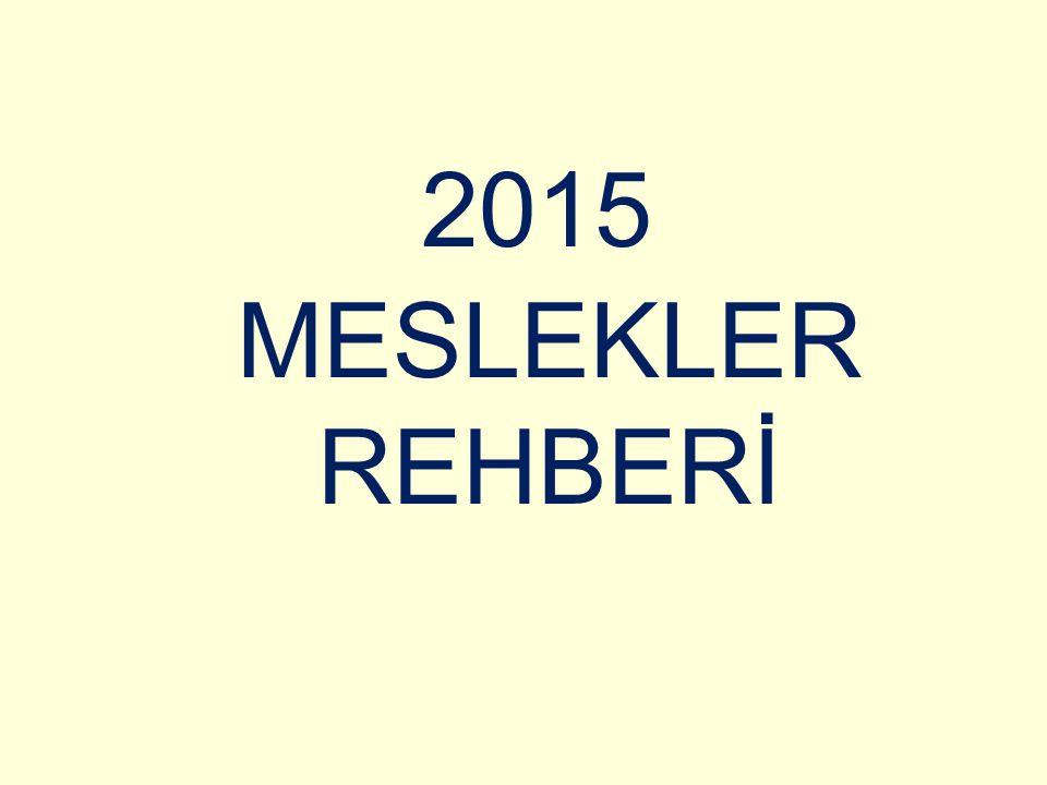 2015 MESLEKLER REHBERİ