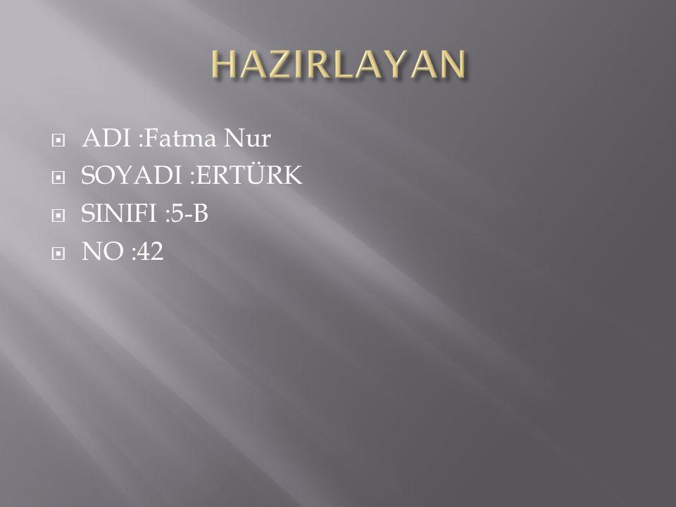  ADI :Fatma Nur  SOYADI :ERTÜRK  SINIFI :5-B  NO :42