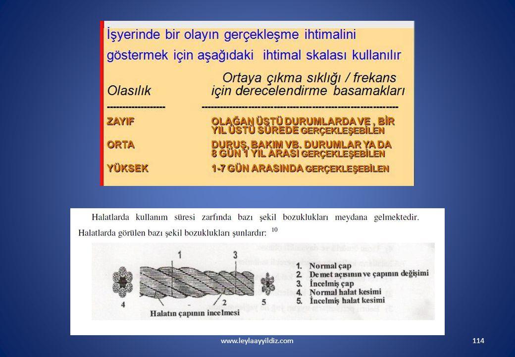 www.leylaayyildiz.com114