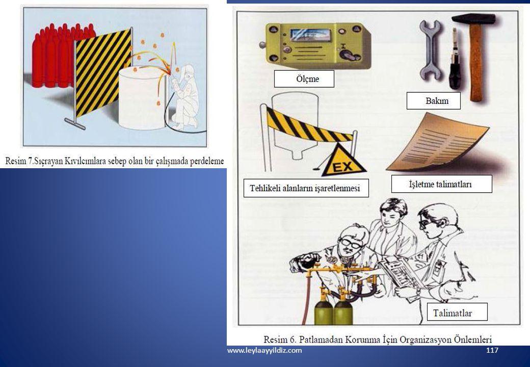 www.leylaayyildiz.com117