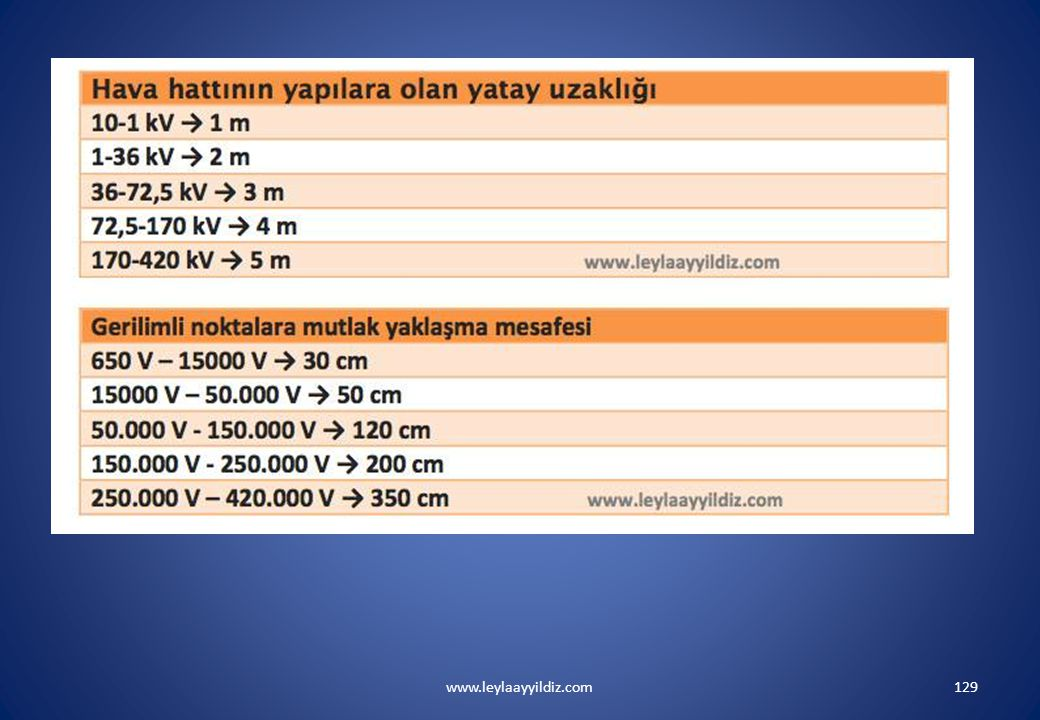 www.leylaayyildiz.com129