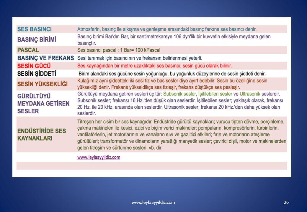 www.leylaayyildiz.com26