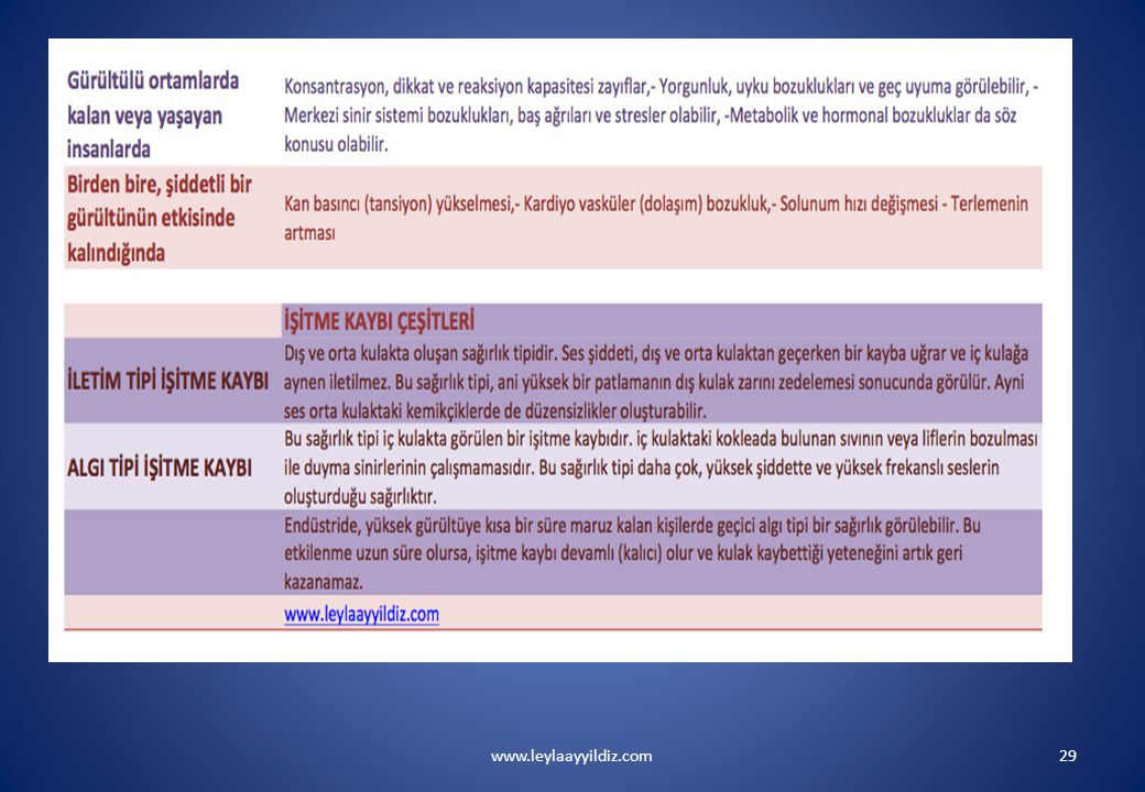www.leylaayyildiz.com29