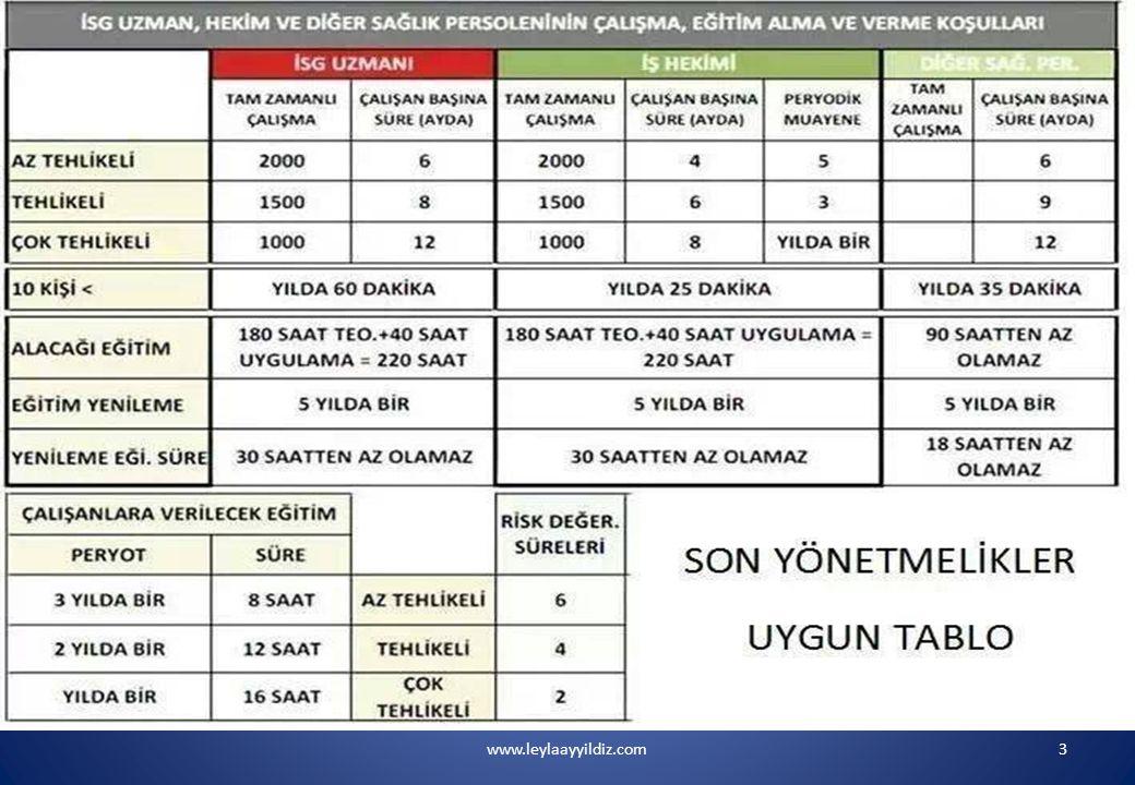 www.leylaayyildiz.com54