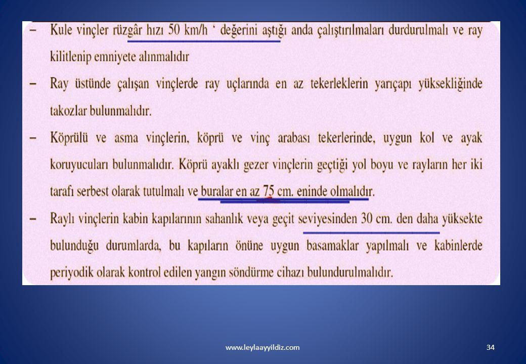 www.leylaayyildiz.com34