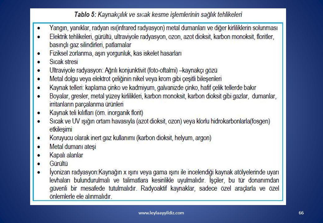 www.leylaayyildiz.com66