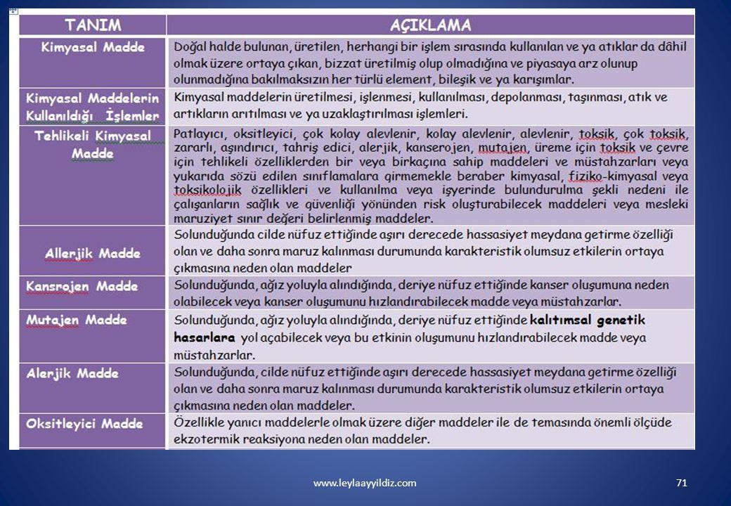 www.leylaayyildiz.com71