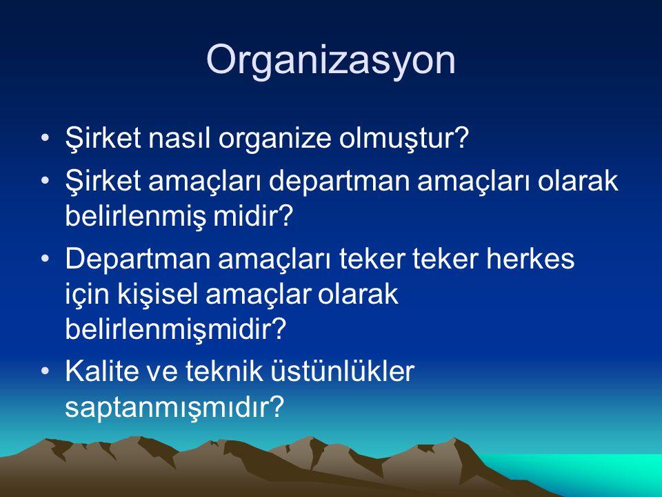 Organizasyon Şirket nasıl organize olmuştur.
