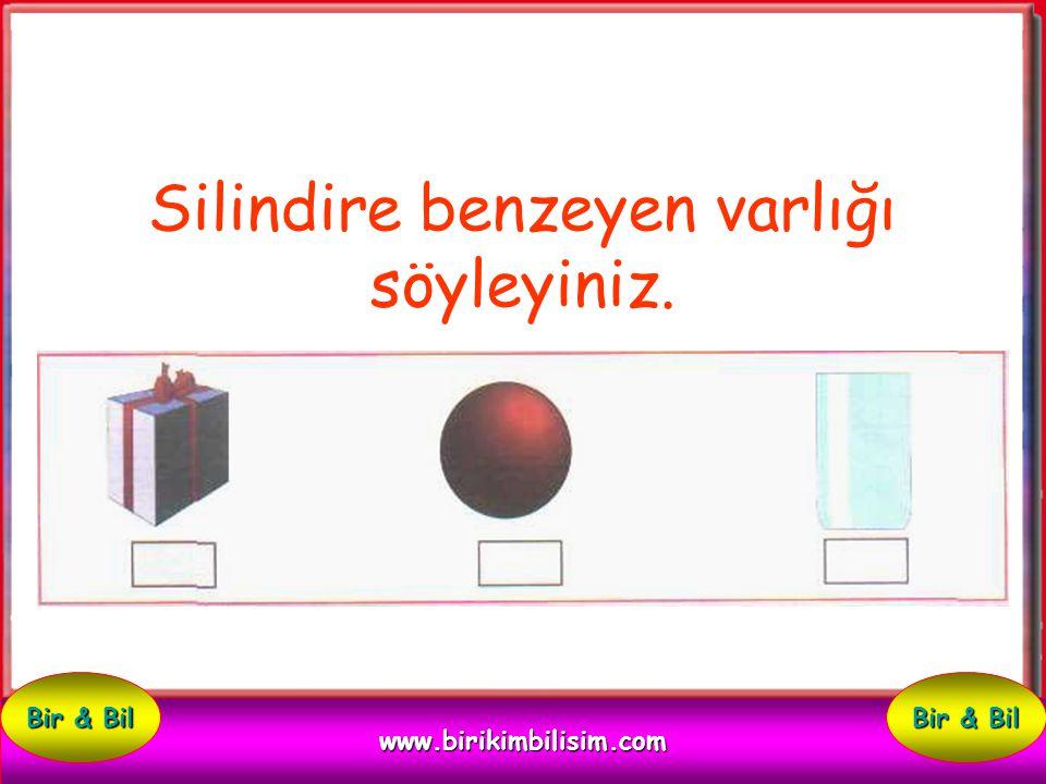 Küreye benzeyen varlığı söyleyiniz. www.birikimbilisim.com Bir & Bil