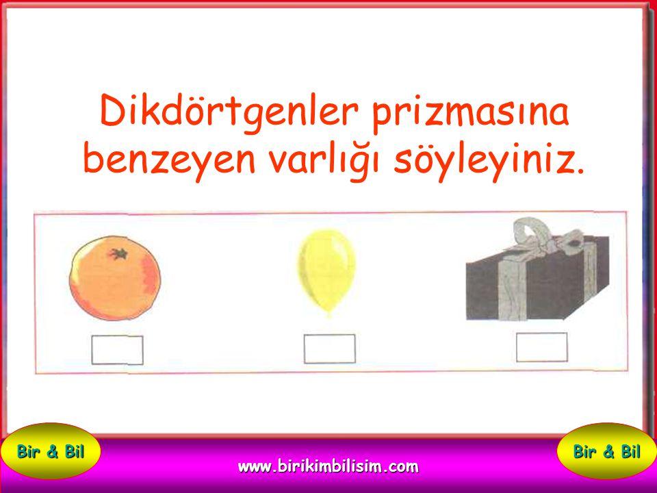 Küpe benzeyen varlığı söyleyiniz. www.birikimbilisim.com Bir & Bil