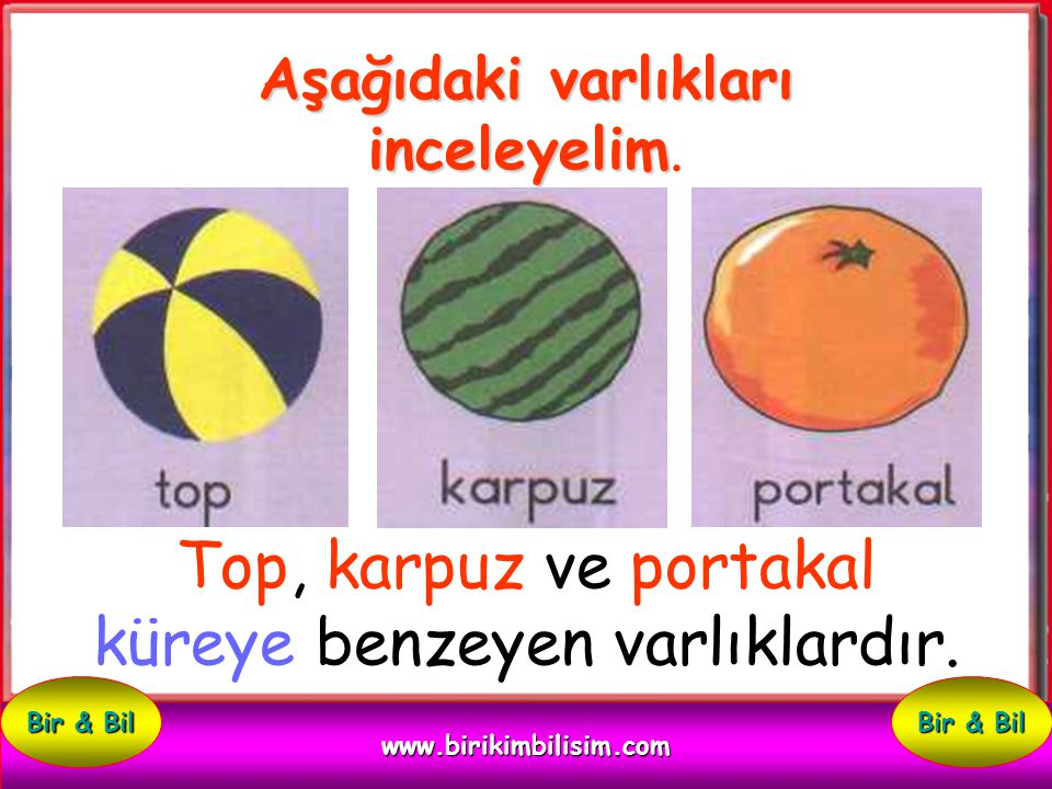 Küreye Benzeyen Varlıklar www.birikimbilisim.com Bir & Bil