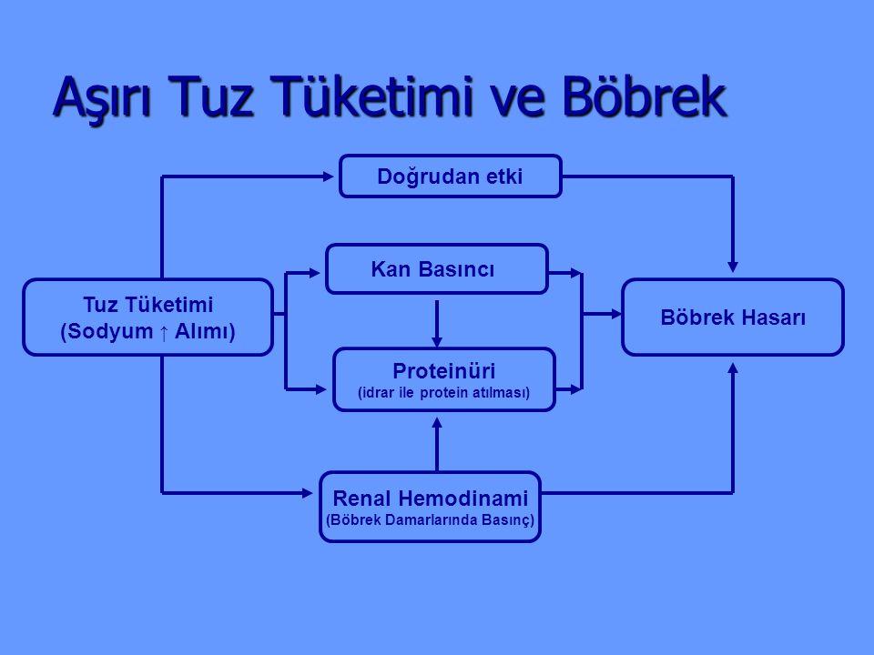 Aşırı Tuz Tüketimi ve Böbrek Tuz Tüketimi (Sodyum ↑ Alımı) Renal Hemodinami (Böbrek Damarlarında Basınç) Proteinüri (idrar ile protein atılması) Kan B