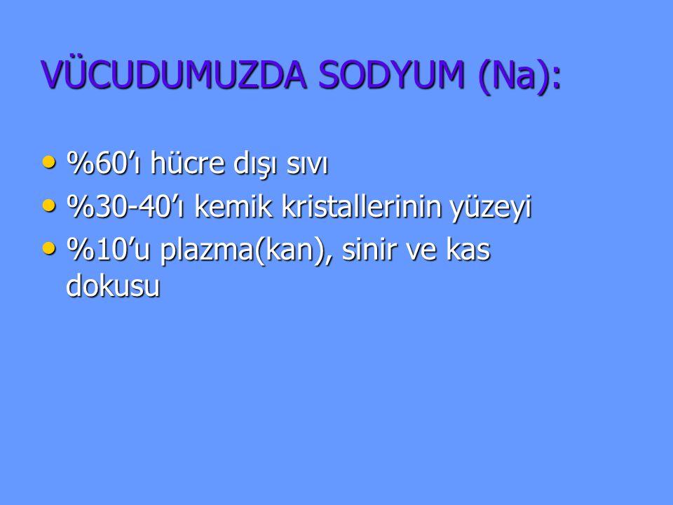 1.1. Sofra Tuzu, Kabartma Tuzu 2. 2. Bulyon Küp, Toz Et Tabletleri 3.