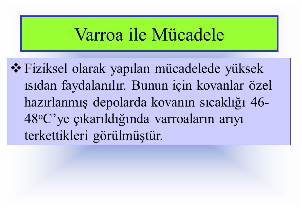 Varroa ile Mücadele  Fiziksel olarak yapılan mücadelede yüksek ısıdan faydalanılır. Bunun için kovanlar özel hazırlanmış depolarda kovanın sıcaklığı