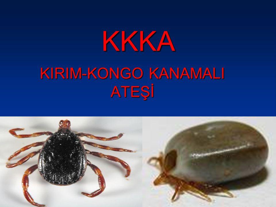 KKKA KIRIM-KONGO KANAMALI ATEŞİ